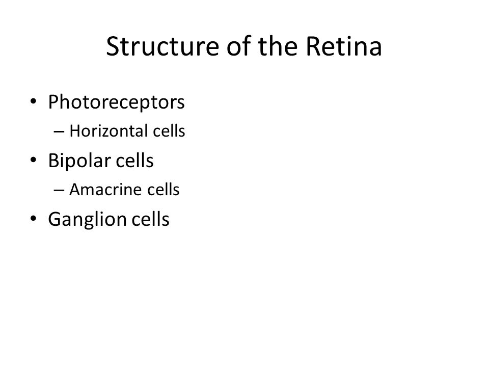 Visual Processing Structure of the Retina Lateral Inhibition Receptive Fields