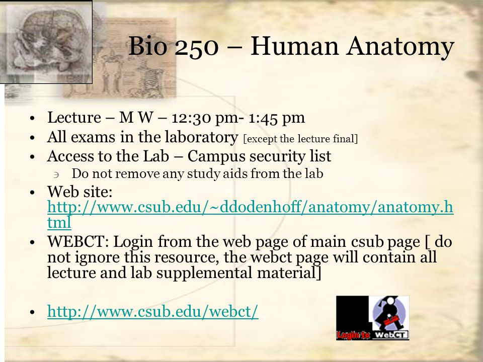 Bio 250 – Human Anatomy Lecture – M W – 12:30 pm- 1:45 pm All exams ...
