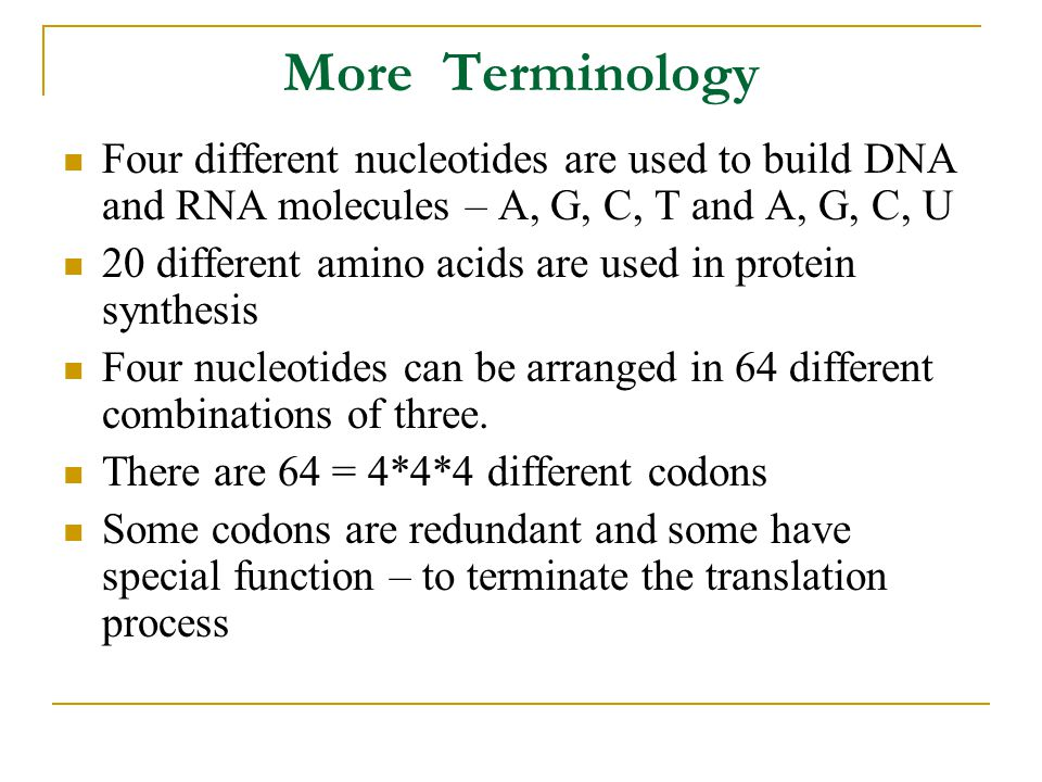More Terminology Four different nucleotides are used to build DNA and RNA molecules – A, G, C, T and A, G, C, U 20 different amino acids are used in protein synthesis Four nucleotides can be arranged in 64 different combinations of three.