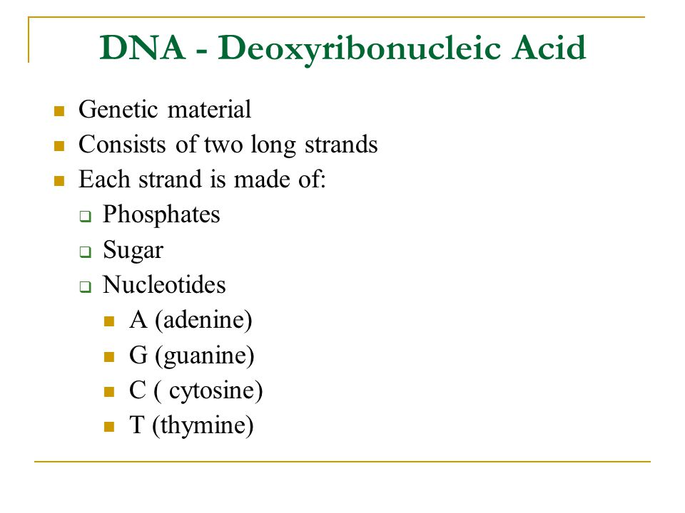 DNA - Deoxyribonucleic Acid Genetic material Consists of two long strands Each strand is made of:  Phosphates  Sugar  Nucleotides A (adenine) G (guanine) C ( cytosine) T (thymine)