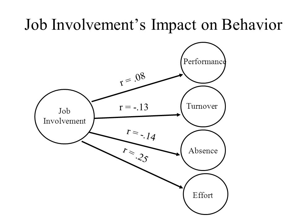 Job Involvement's Impact on Behavior Job Involvement Performance Turnover Absence r =.08 r = -.13 r = -.14 Effort r =.25