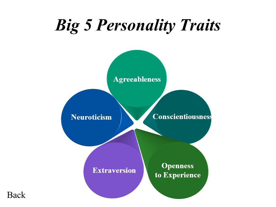 Big 5 Personality Traits Agreeableness Neuroticism Conscientiousness Openness to Experience Extraversion Back
