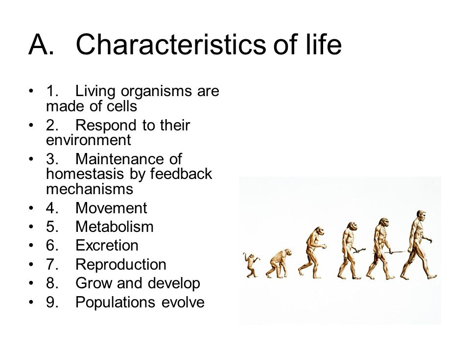 10 acharacteristics of life 1living organisms are made of cells 2respond to their environment 3maintenance of homestasis by feedback mechanisms 4