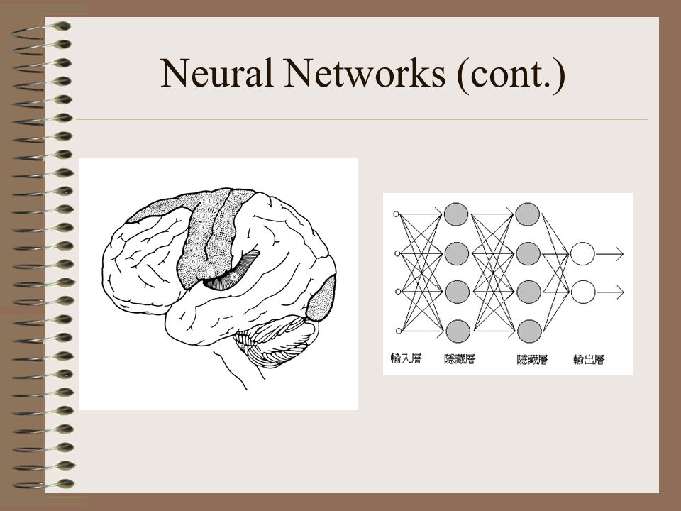 Neural Networks (cont.)