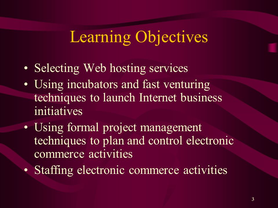 3 Learning Objectives Selecting Web hosting services Using incubators and fast venturing techniques to launch Internet business initiatives Using formal project management techniques to plan and control electronic commerce activities Staffing electronic commerce activities