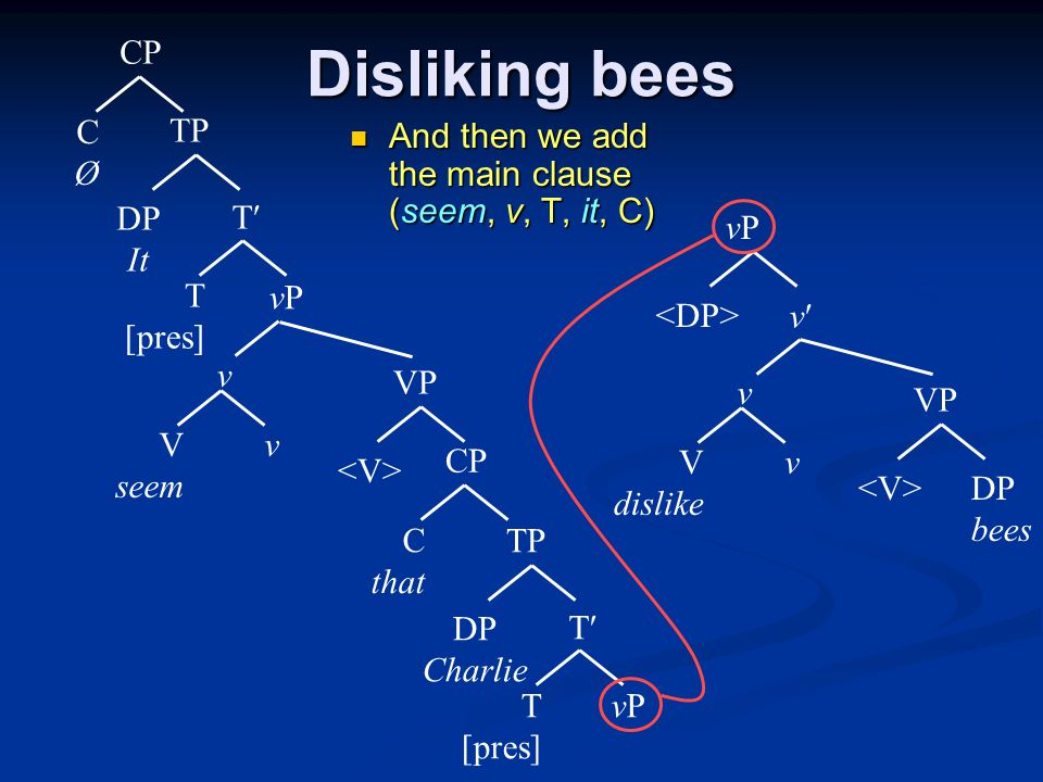 Disliking bees And then we add the main clause (seem, v, T, it, C) And then we add the main clause (seem, v, T, it, C) vPvP T T [pres] TP DP Charlie CP C that V seem VP vPvP v v T T [pres] TP DP It CP CØCØ V dislike VP DP bees v v vPvP v
