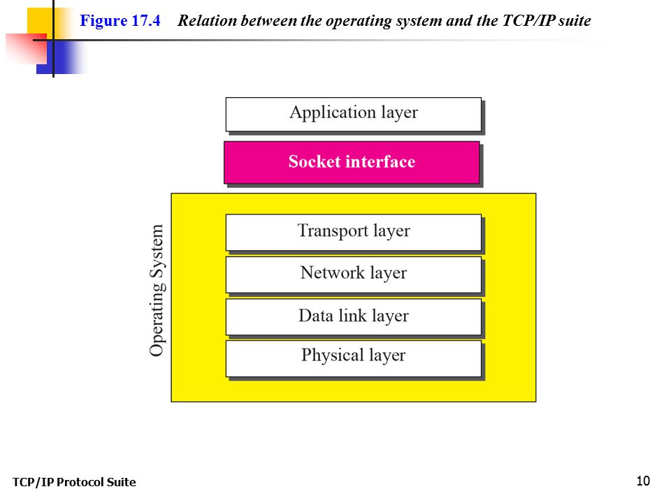 TCP/IP Protocol Suite 10 Figure 17.4 Relation between the operating system and the TCP/IP suite