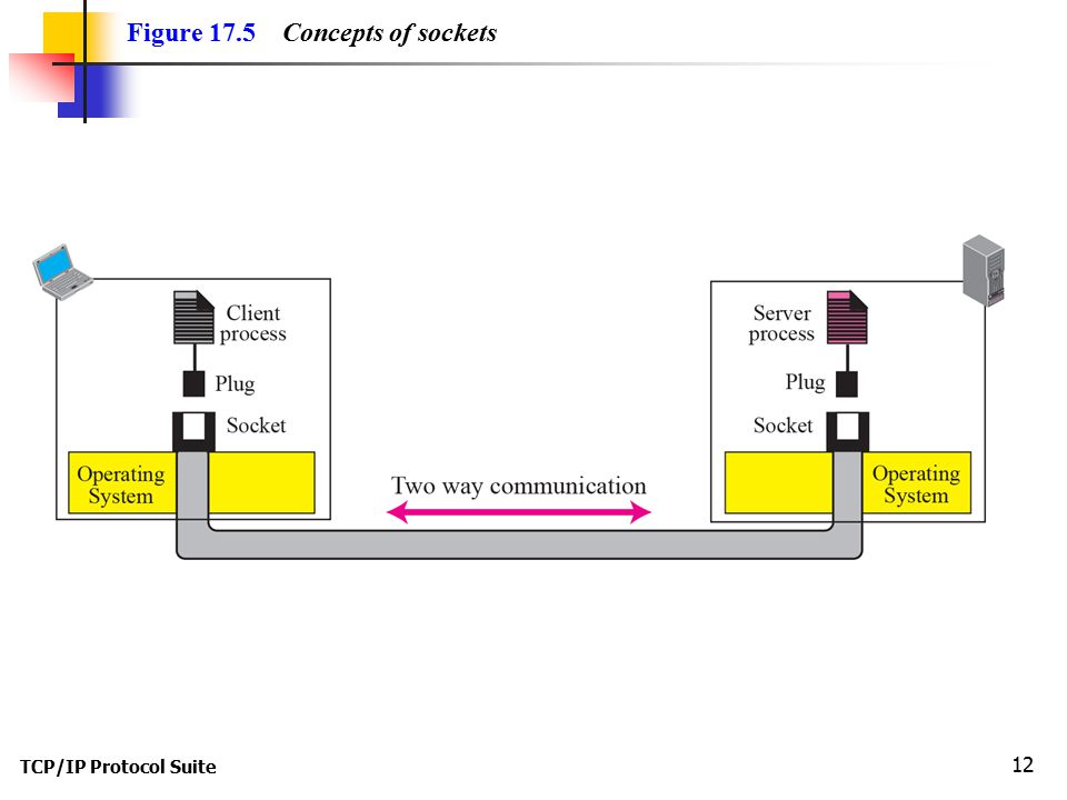 TCP/IP Protocol Suite 12 Figure 17.5 Concepts of sockets