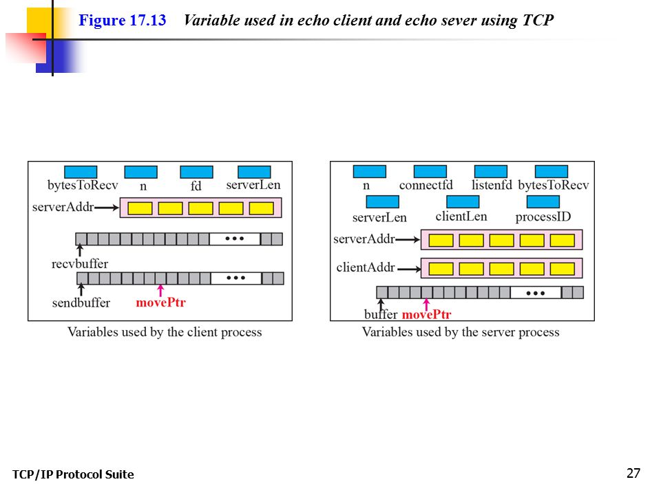 TCP/IP Protocol Suite 27 Figure Variable used in echo client and echo sever using TCP