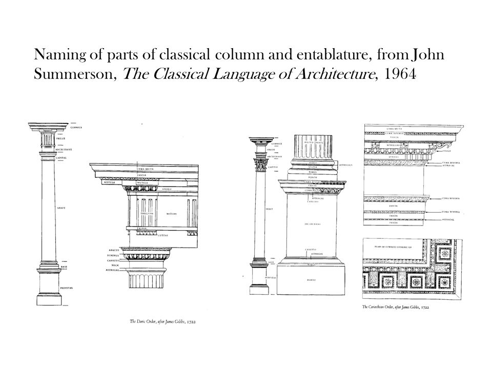 Parts Of A Column >> The Order Of The Orders Naming Of Parts Of Classical Column And