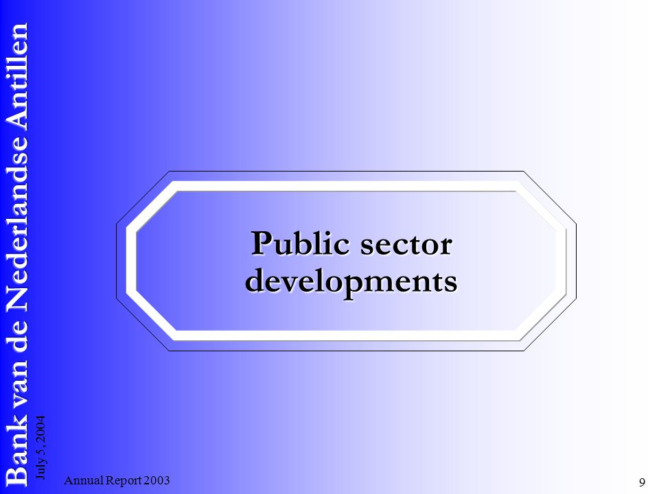 Annual Report July 5, 2004 Public sector developments