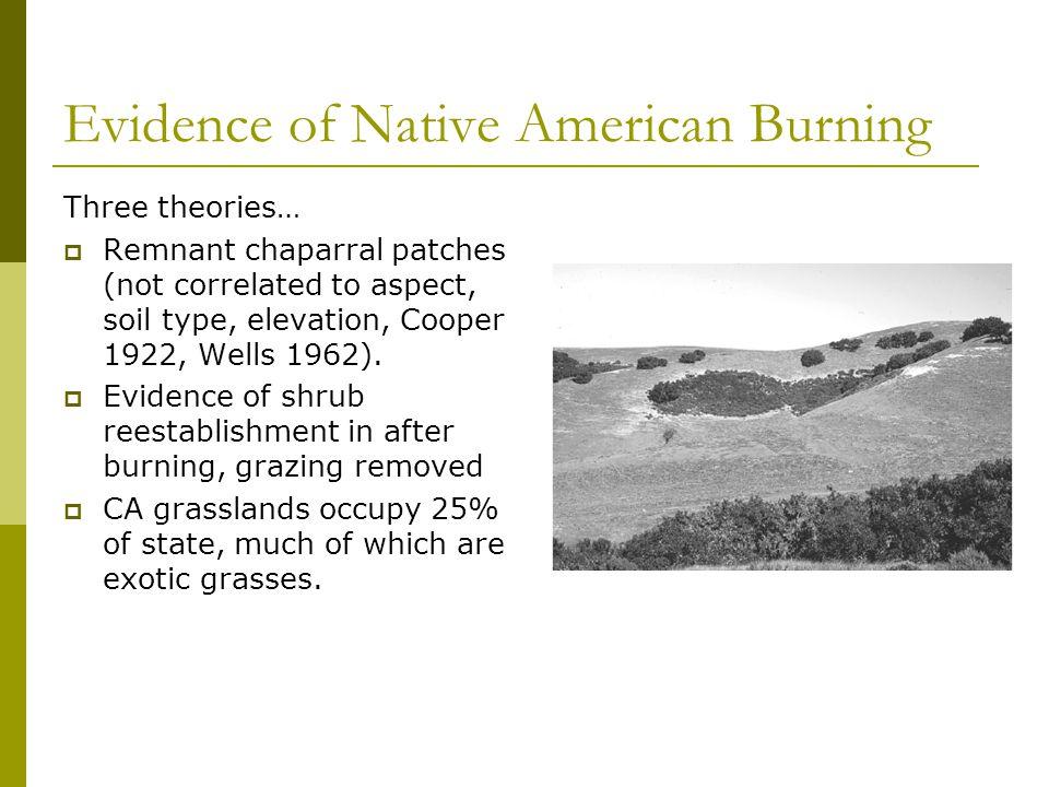 "Chief Mountain  Hotshots  /""Blackfeet Nation/"" Wildland Montana  fire patch"