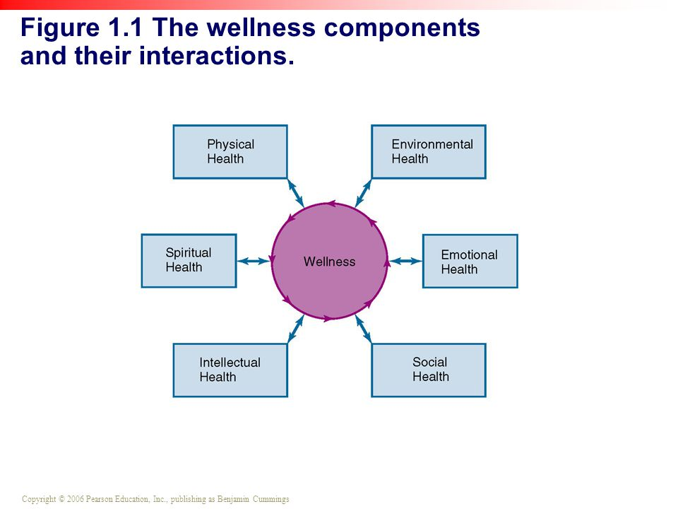 Pearson Education Inc Publishing As Benjaminmings Figure 1 1 The Wellness Components And Their Interactions
