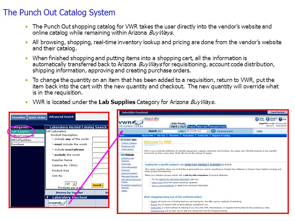 The Punch Out Catalog System The Punch Out shopping catalog for VWR takes the user directly into the vendor's website and online catalog while remaining within Arizona BuyWays.