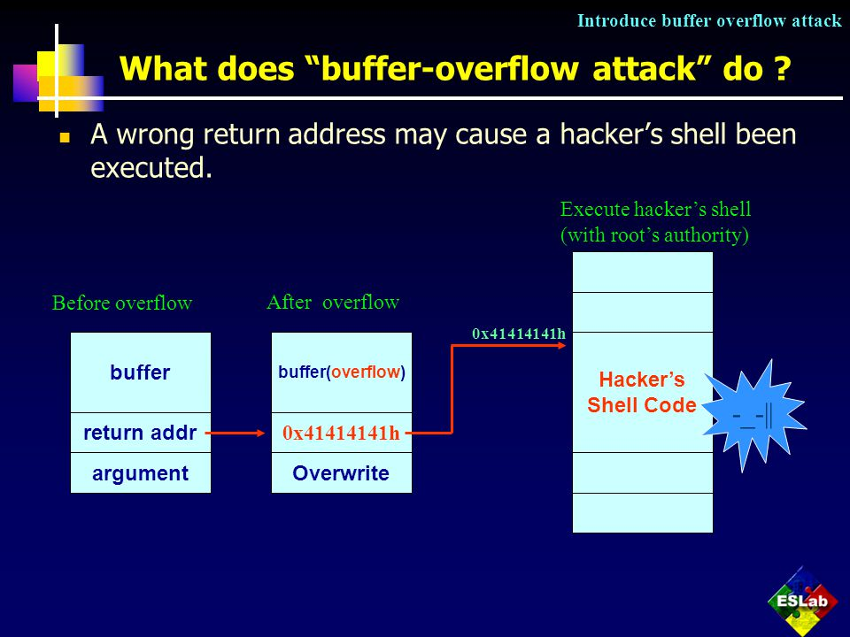 Security Protection and Checking in Embedded System