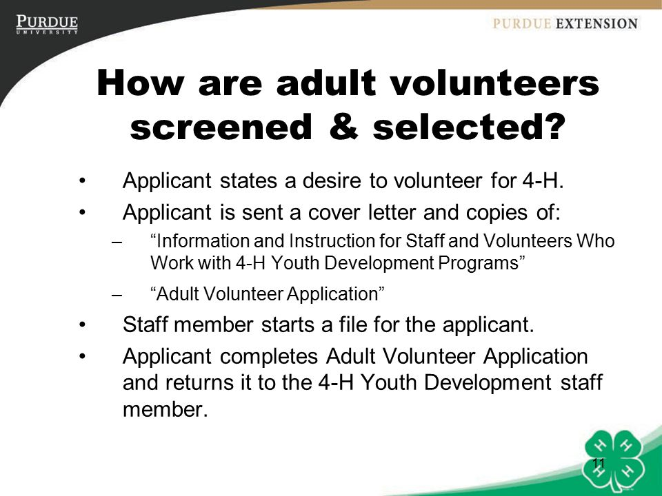 11 How are adult volunteers screened & selected. Applicant states a desire to volunteer for 4-H.