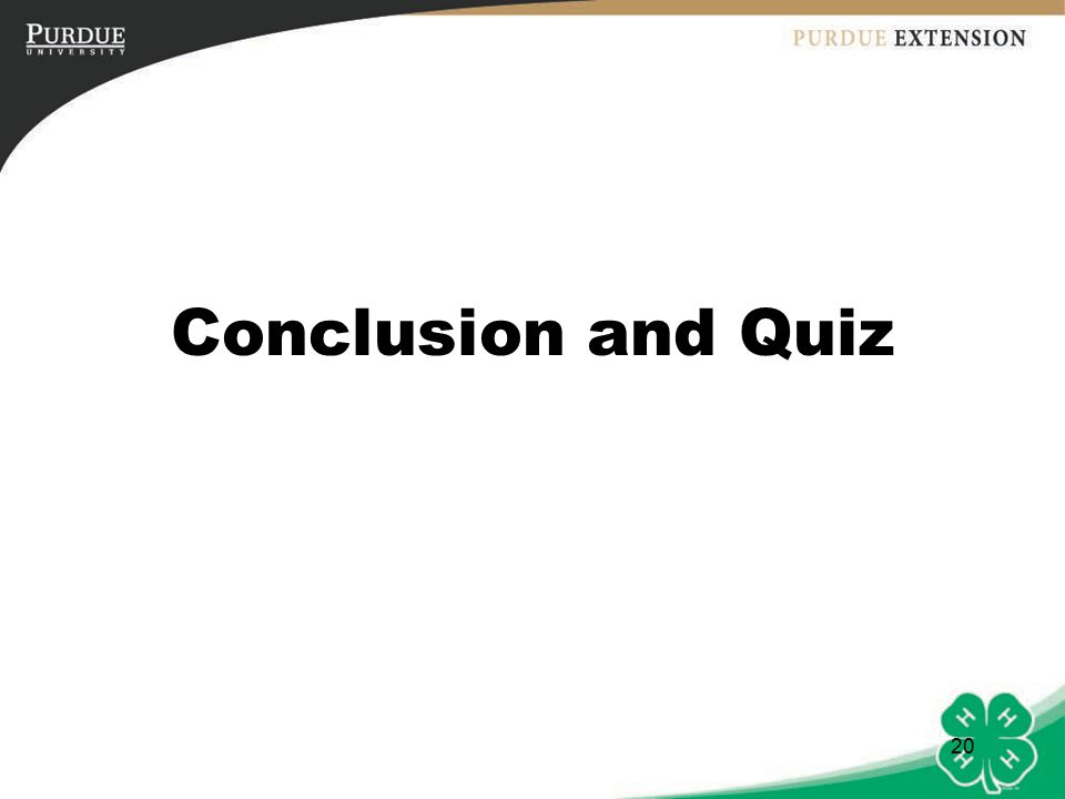 20 Conclusion and Quiz