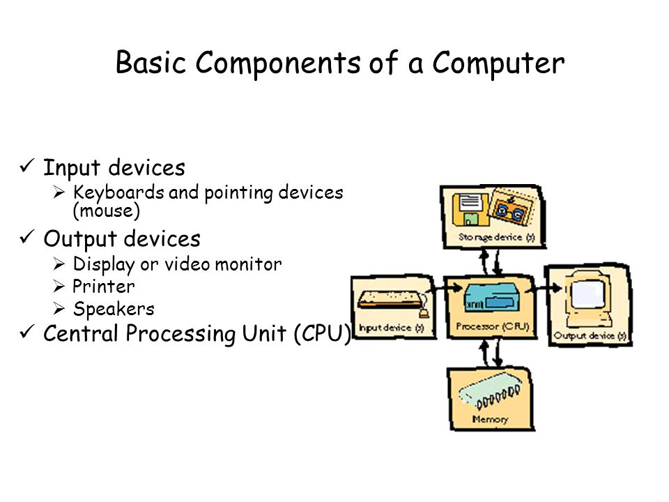 Basic Components of a Computer Input devices  Keyboards and pointing devices (mouse) Output devices  Display or video monitor  Printer  Speakers Central Processing Unit (CPU)