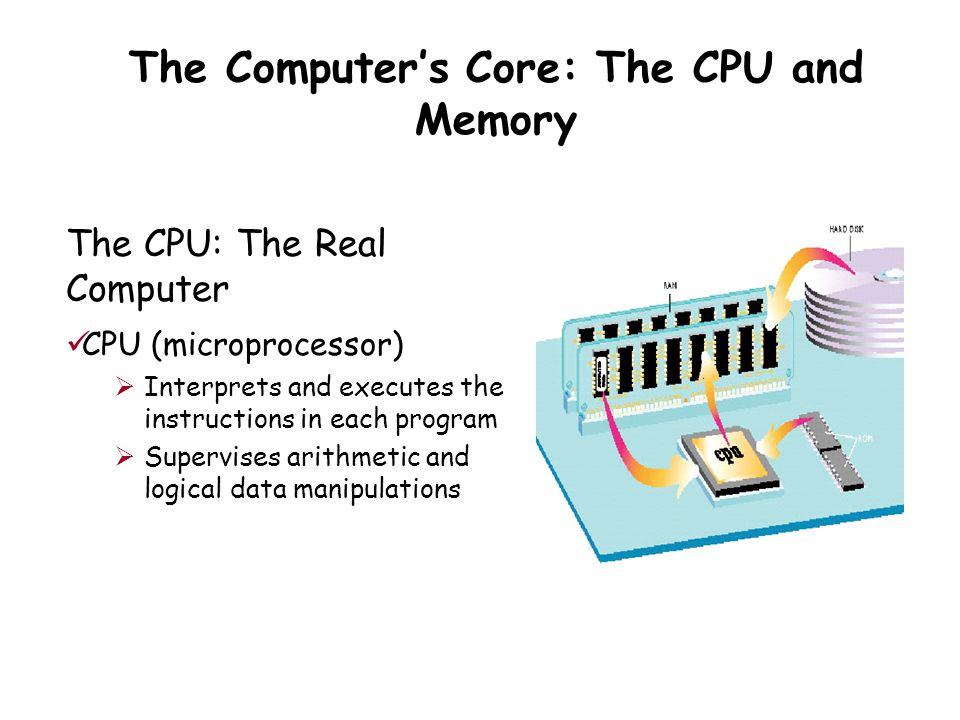 The Computer's Core: The CPU and Memory The CPU: The Real Computer CPU (microprocessor)  Interprets and executes the instructions in each program  Supervises arithmetic and logical data manipulations