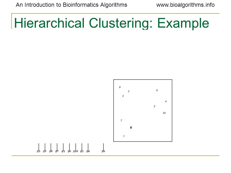 An Introduction to Bioinformatics Algorithmswww.bioalgorithms.info Hierarchical Clustering: Example