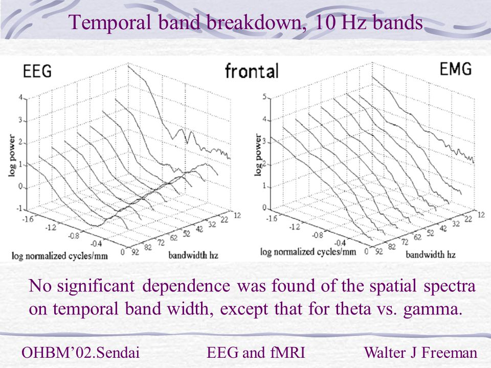Temporal band breakdown, 10 Hz bands OHBM'02.Sendai EEG and fMRI Walter J Freeman No significant dependence was found of the spatial spectra on temporal band width, except that for theta vs.