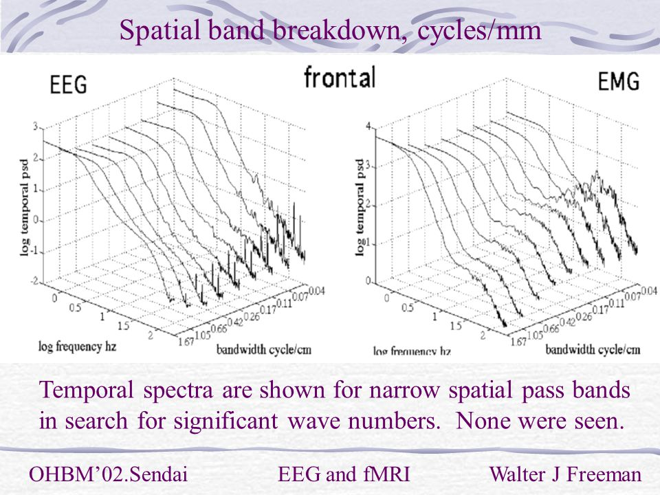 Spatial band breakdown, cycles/mm OHBM'02.Sendai EEG and fMRI Walter J Freeman Temporal spectra are shown for narrow spatial pass bands in search for significant wave numbers.