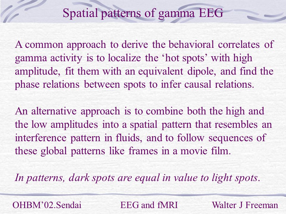 Spatial patterns of gamma EEG OHBM'02.Sendai EEG and fMRI Walter J Freeman A common approach to derive the behavioral correlates of gamma activity is to localize the 'hot spots' with high amplitude, fit them with an equivalent dipole, and find the phase relations between spots to infer causal relations.