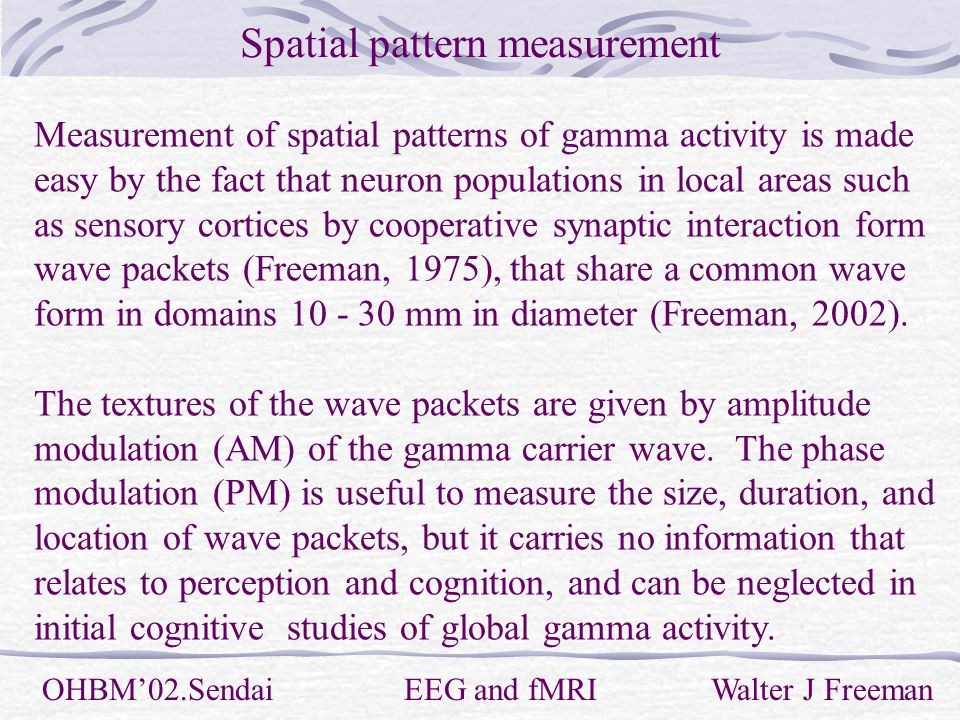 Spatial pattern measurement OHBM'02.Sendai EEG and fMRI Walter J Freeman Measurement of spatial patterns of gamma activity is made easy by the fact that neuron populations in local areas such as sensory cortices by cooperative synaptic interaction form wave packets (Freeman, 1975), that share a common wave form in domains mm in diameter (Freeman, 2002).