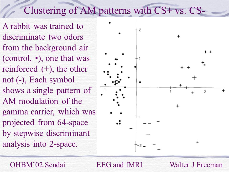 Clustering of AM patterns with CS+ vs.