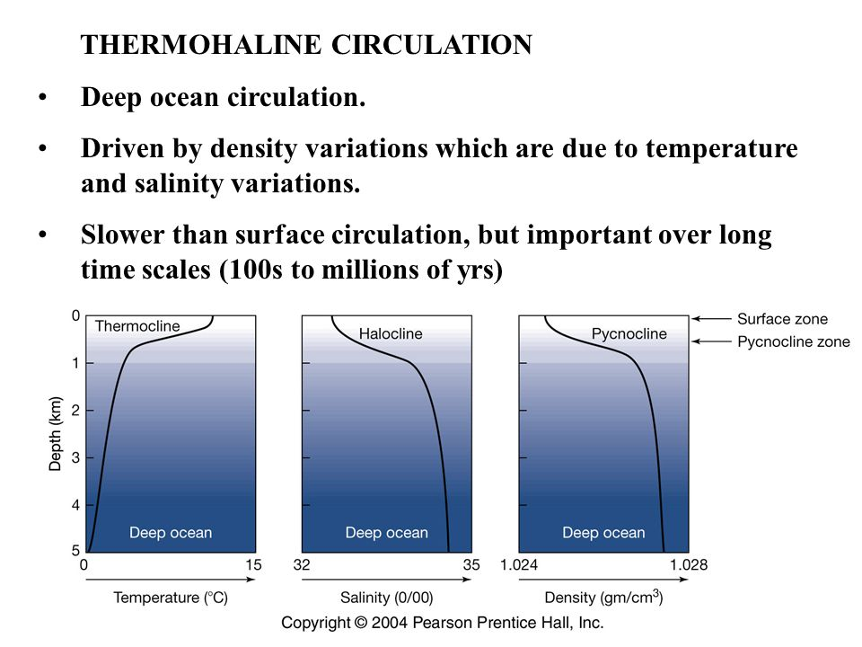 THERMOHALINE CIRCULATION Deep ocean circulation.