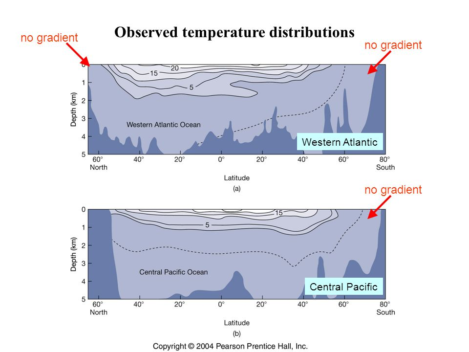 Observed temperature distributions Western Atlantic Central Pacific no gradient