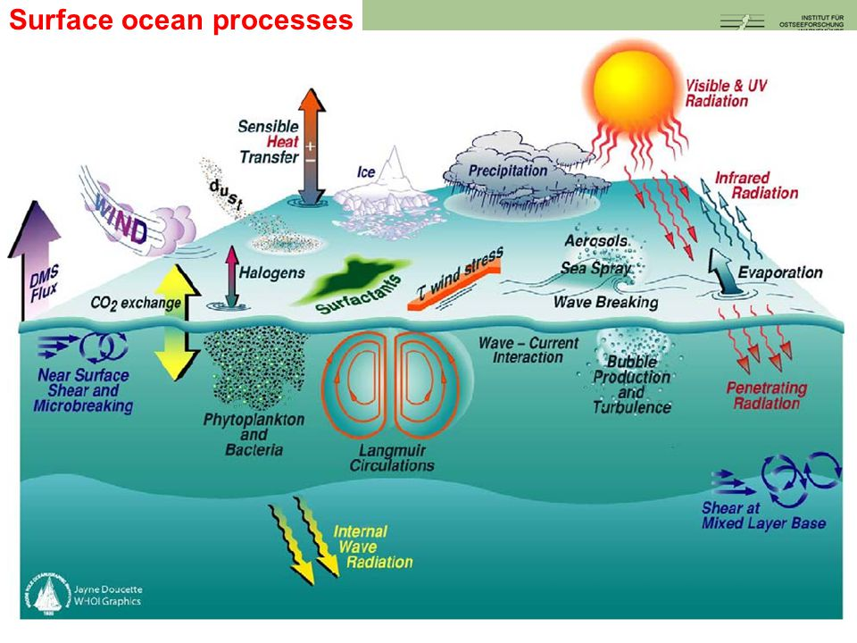 Surface ocean processes