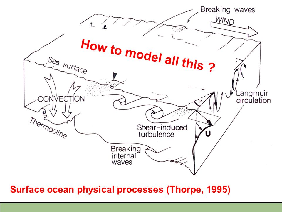 Surface ocean physical processes (Thorpe, 1995) How to model all this