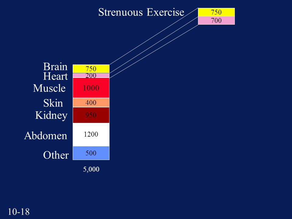 ,000 Heart Brain Muscle Skin Kidney Abdomen Other Strenuous Exercise