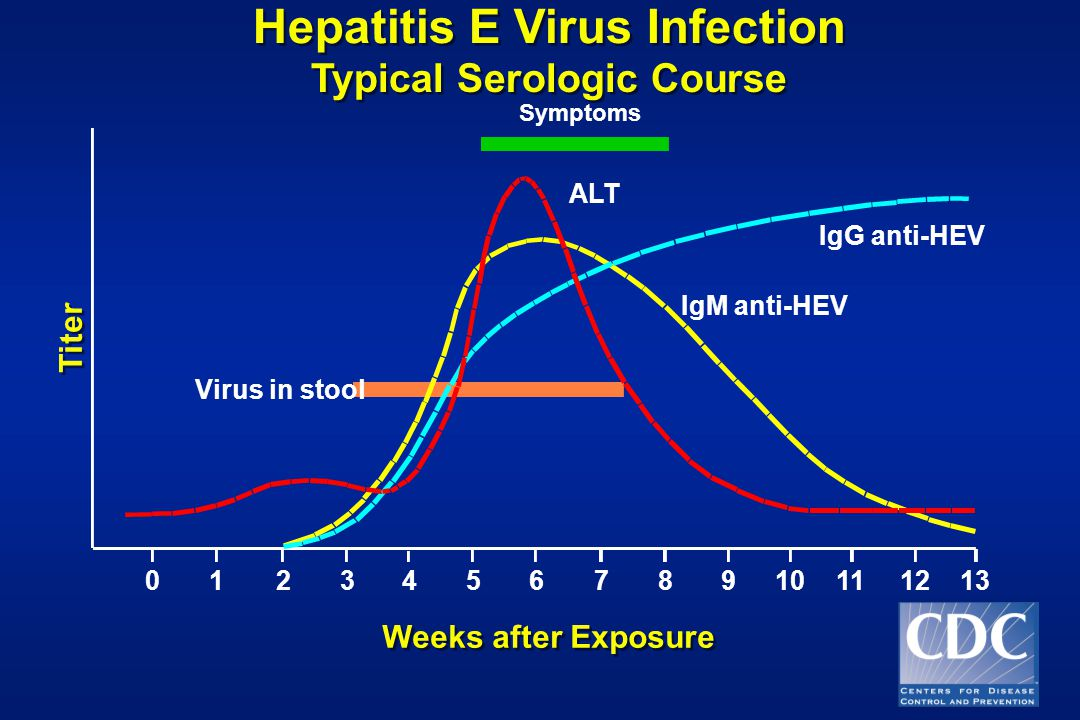 Hepatitis E Virus Infection Typical Serologic Course Weeks after Exposure Titer Symptoms ALT IgG anti-HEV IgM anti-HEV Virus in stool