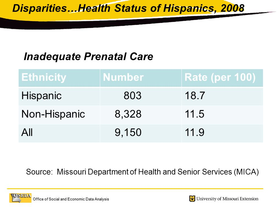 Office of Social and Economic Data Analysis EthnicityNumberRate (per 100) Hispanic Non-Hispanic 8, All 9, Disparities…Health Status of Hispanics, 2008 Source: Missouri Department of Health and Senior Services (MICA) Inadequate Prenatal Care