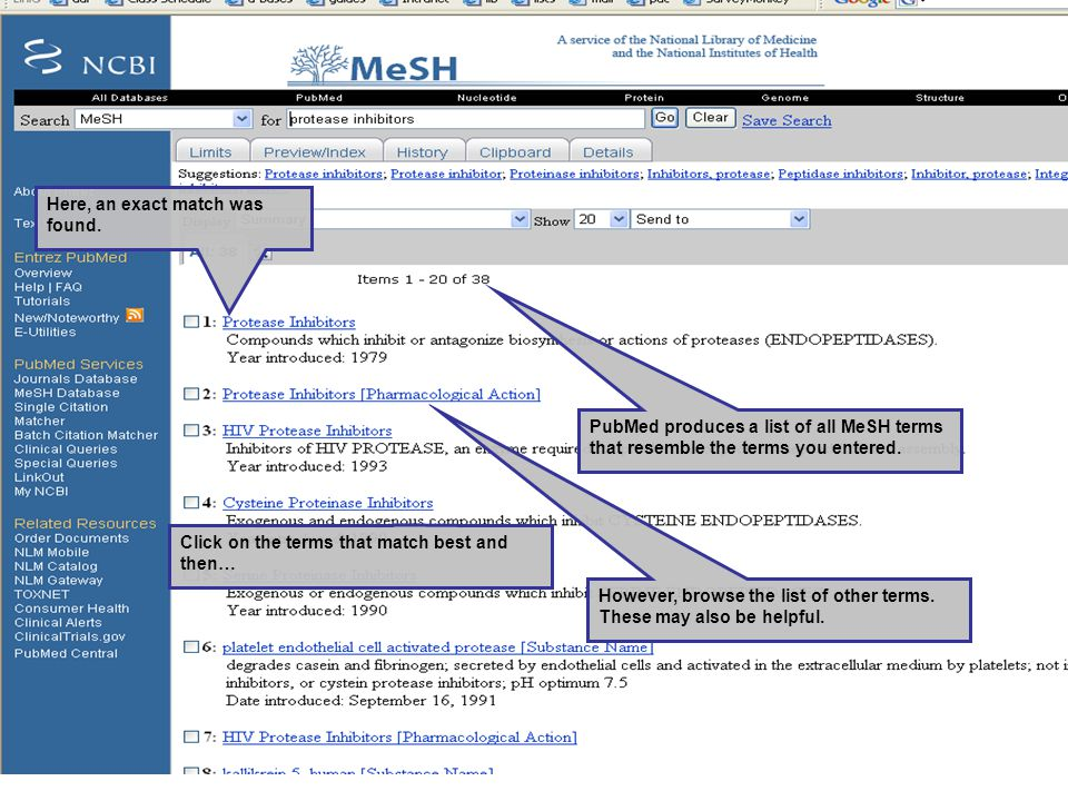 PubMed produces a list of all MeSH terms that resemble the terms you entered.