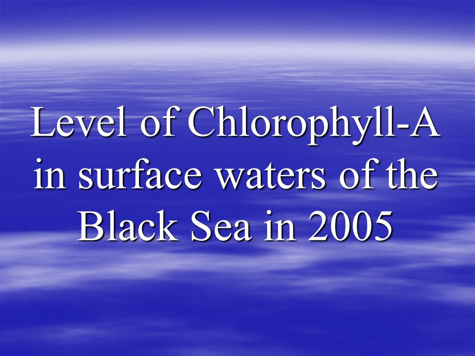 Level of Chlorophyll-A in surface waters of the Black Sea in 2005