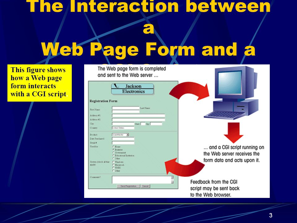 XP 3 The Interaction between a Web Page Form and a CGI Script This figure shows how a Web page form interacts with a CGI script.