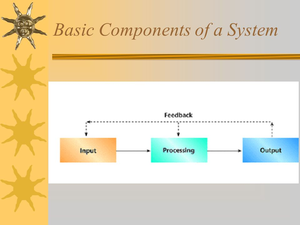 Basic Components of a System