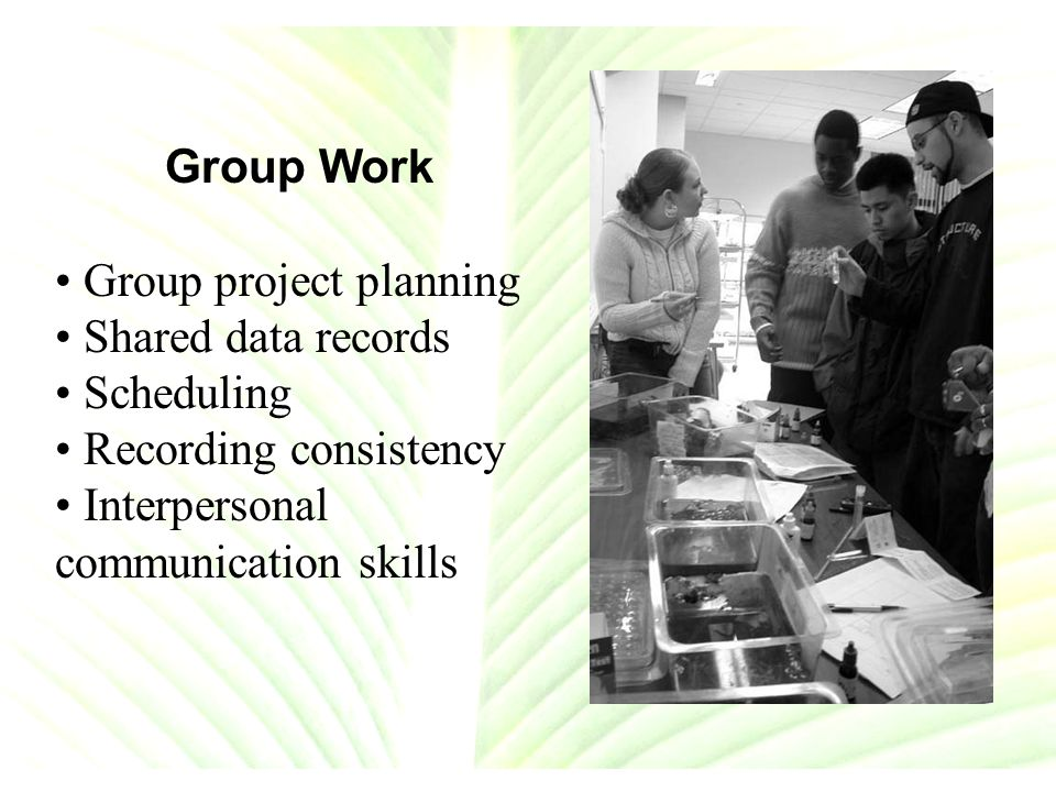 Group Work Group project planning Shared data records Scheduling Recording consistency Interpersonal communication skills