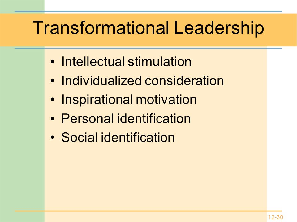 12-30 Transformational Leadership Intellectual stimulation Individualized consideration Inspirational motivation Personal identification Social identification