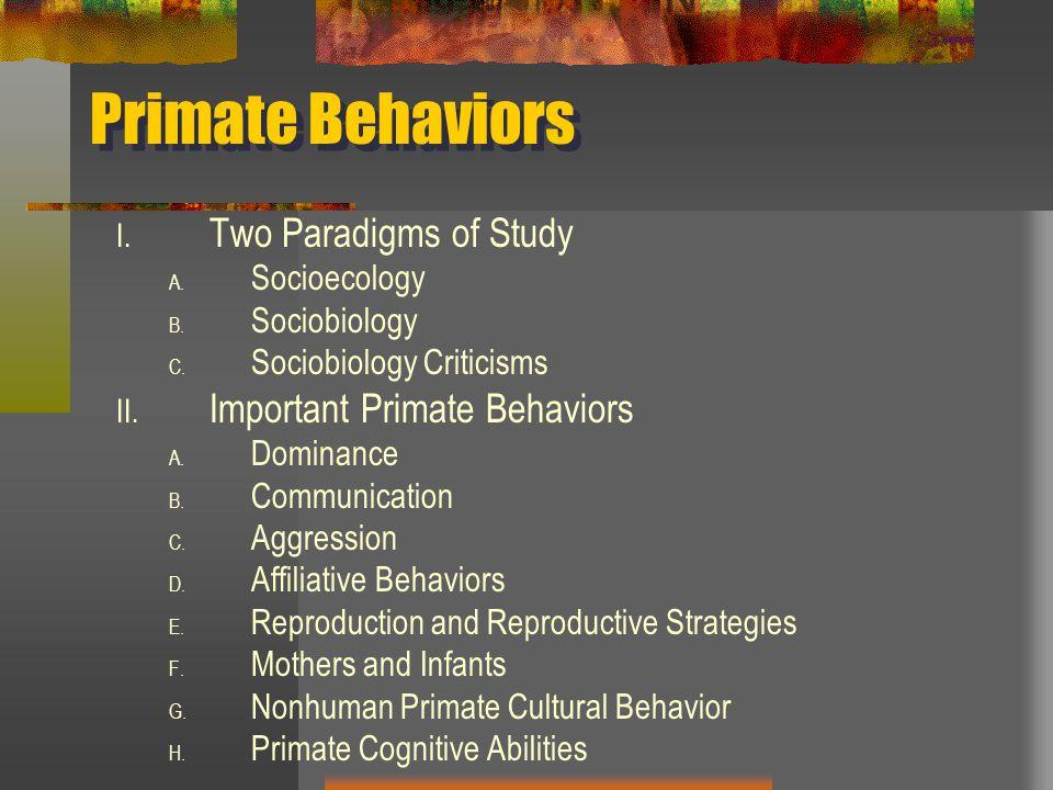 Primate paradigm sex role and social bonds