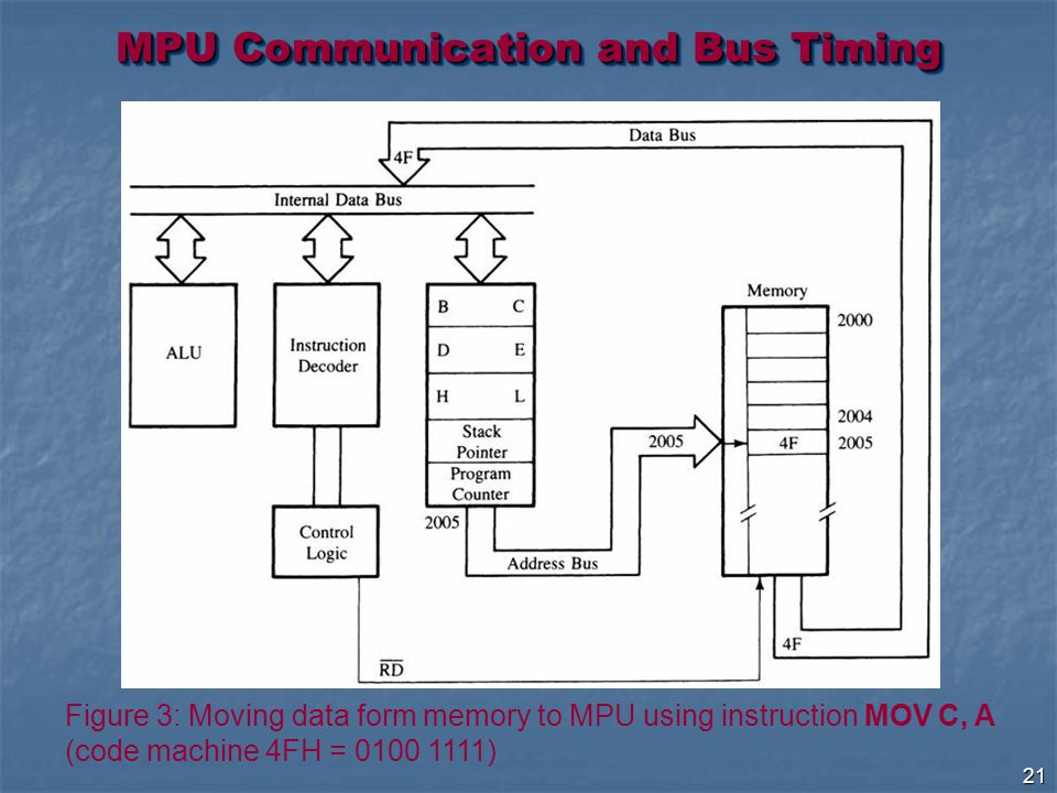 21 MPU Communication and Bus Timing Figure 3: Moving data form memory to MPU using instruction MOV C, A (code machine 4FH = )