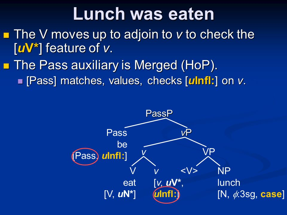 Lunch was eaten The V moves up to adjoin to v to check the [uV*] feature of v.