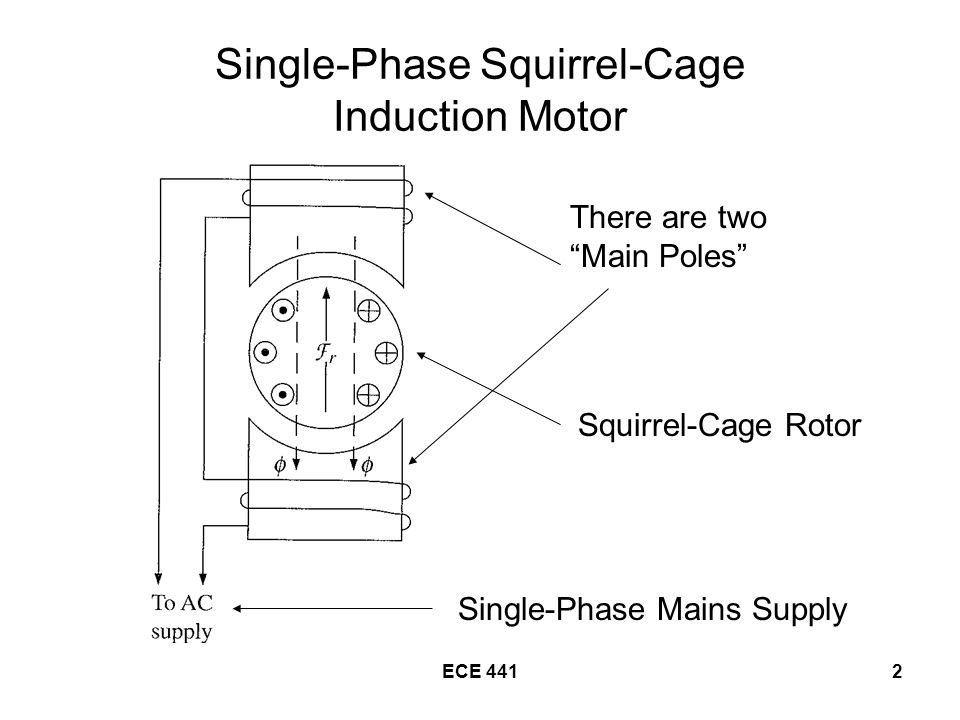 ECE 4412 Single-Phase Squirrel-Cage Induction Motor There are two Main Poles Squirrel-Cage Rotor Single-Phase Mains Supply