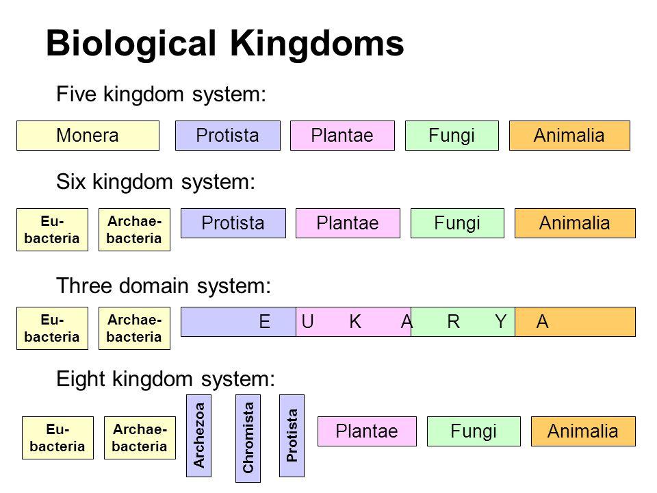 six kingdoms - 960×720