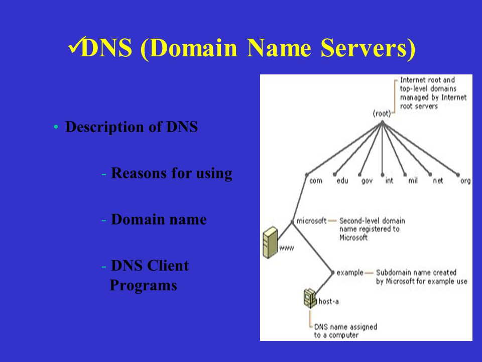 DNS (Domain Name Servers) Description of DNS - Reasons for using - Domain name - DNS Client Programs