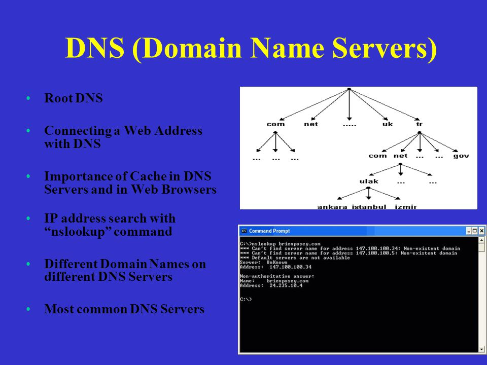 DNS (Domain Name Servers) Root DNS Connecting a Web Address with DNS Importance of Cache in DNS Servers and in Web Browsers IP address search with nslookup command Different Domain Names on different DNS Servers Most common DNS Servers