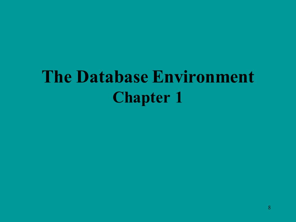 8 The Database Environment Chapter 1